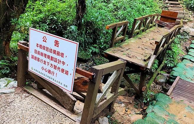 步道內結構損毀的木造橋樑已暫時封閉(圖/林務局嘉義林區管理處 提供)