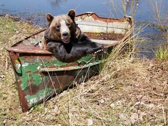 與棕熊受困船上竟還冷靜釣魚 大膽女曝超暖真相