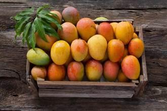 芒果上有黑點還能吃嗎?一種狀況就別吃下肚