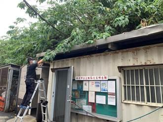烟花颱風來襲 新北動物之家24小時輪班留守護毛寶貝