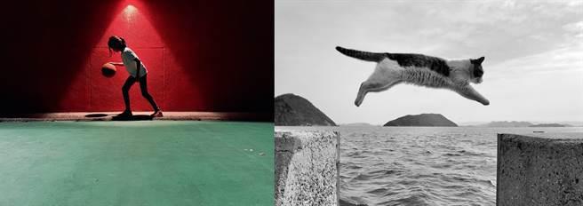 由左至右各是森爸 (Ethan) 的人物組佳作作品、吳佳芳拍攝的動物組佳作。(蘋果提供)