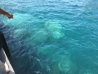烟花帶來巨石阻礙船隻航道 基隆嶼登島期程再延