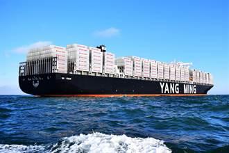 台廠出貨哀號沒櫃可用 陽明增開加班船救援