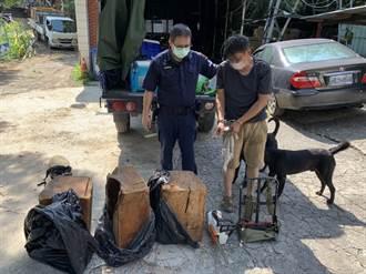 山老鼠偷採130公斤珍貴國有木 桃園警:移送法辦
