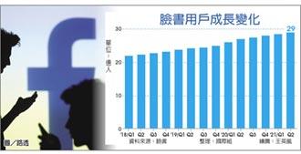 臉書示警 營收成長恐大減速