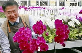 台南蘭花美名遠播 美國哥倫布市介紹園藝之美