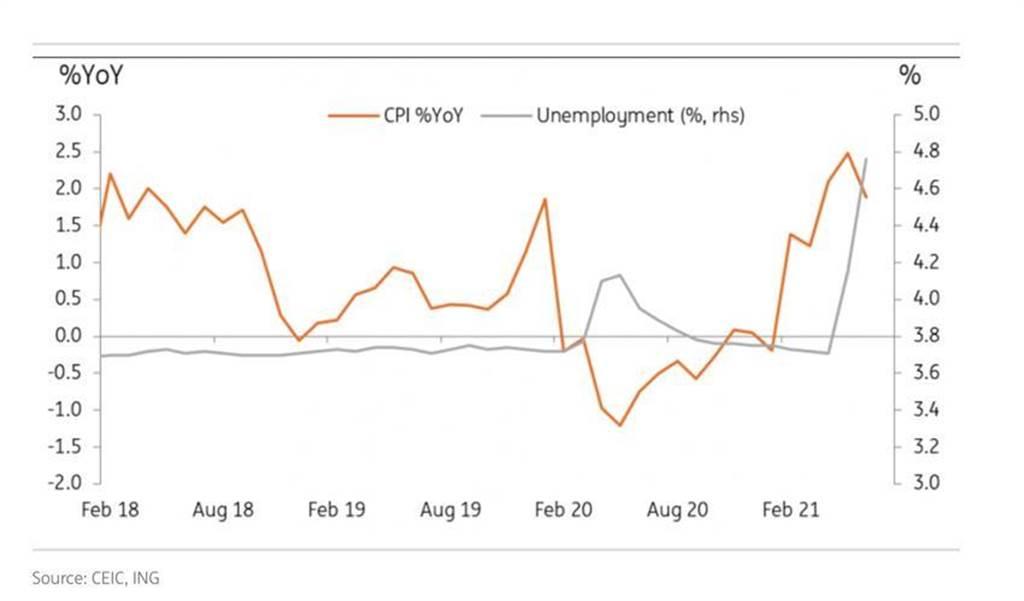 民間消費指數CPI下跌和失業率上升,是台灣經濟成長後續動能的隱憂。(資料來源/ING安智銀行)