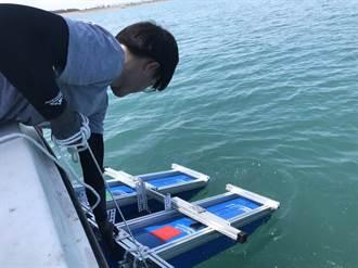 清除看不見的汙染 竹圍漁港7月起執行微塑膠清除計畫