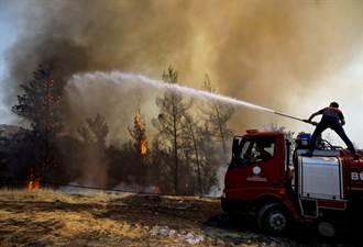 土耳其野火燒5天8人喪命 希臘義大利也傳災情