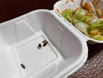 900元健康餐吃到蟑螂一家子 受害女爬文挖出驚人發現