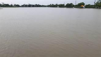 8月豪雨農損累計破億 這縣市堪稱最大苦主
