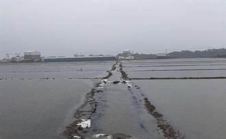 西南氣流豪雨致災 雲林初估農損872萬元