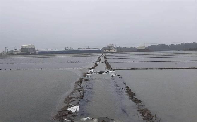 西南氣流豪雨致災,雲林縣初估農損872萬元。(雲林縣政府提供/張朝欣雲林傳真)