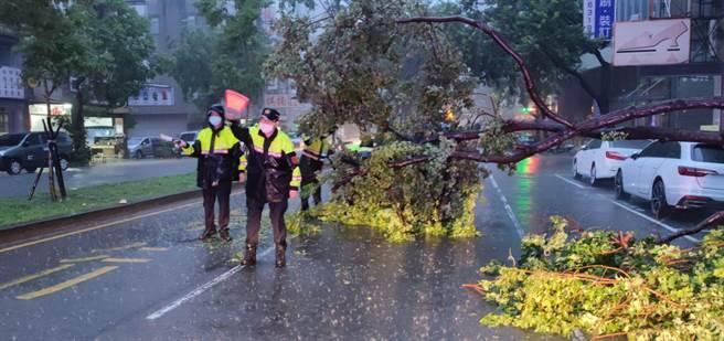 連日大雨路樹斷裂橫擋車道,中市警漏夜冒雨緊急救援。(警方提供/陳淑芬台中傳真)