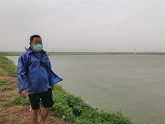 豪雨成災水漫魚塭 七股文蛤池無海水可換恐暴斃