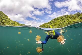 帛琉泡泡將開放自由行 4天優惠下殺3.2萬元