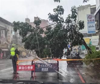 雨炸高雄 高市開放326處臨停點供車主緊急停放