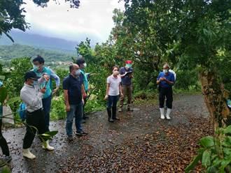 豪雨強襲台南農損達3097萬元 市府協助農友爭取救助