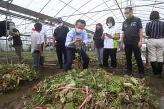 連日豪大雨 嘉義縣農畜作物損失約2200餘萬元