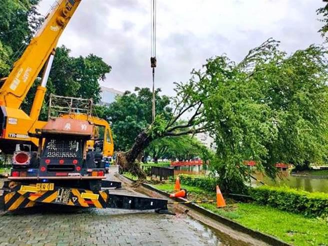 受到颱風及西南氣流接連來襲,造成台中傳出路樹倒塌、道路坑洞、積淹水等災情。(台中市政府提供)