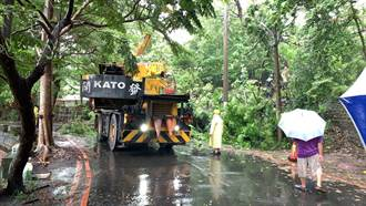 熱帶低氣壓夾帶大雨來襲 台中市府加強路樹巡檢