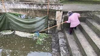台東池上大坡池進水口設攔網 有利管理及生態