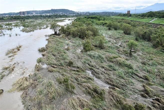 頭份中港溪水混濁一片,水勢非常大。(謝明俊攝)