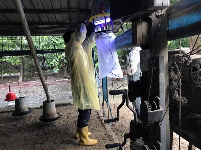 台南市今年已出現4例日本腦炎,市府衛生局籲請豬舍加強防蚊滅蚊措施。(市府衛生局提供/洪榮志台南傳真)