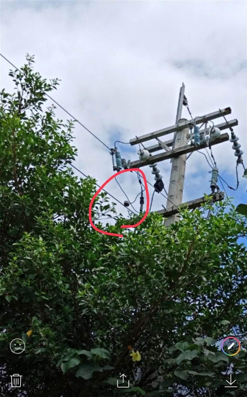 一隻小松鼠今天上午9點36分許誤觸花蓮美崙變電所中美線其中一支電線桿,導致避雷器炸損,影響4千多用戶無電可用,經搶修後,已在9點57分恢復正常供電。(台電提供/羅亦晽花蓮傳真)