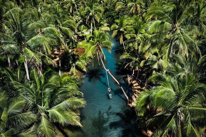 ▲夢幻椰林鞦韆。 圖:菲律賓觀光部台灣分處/提供
