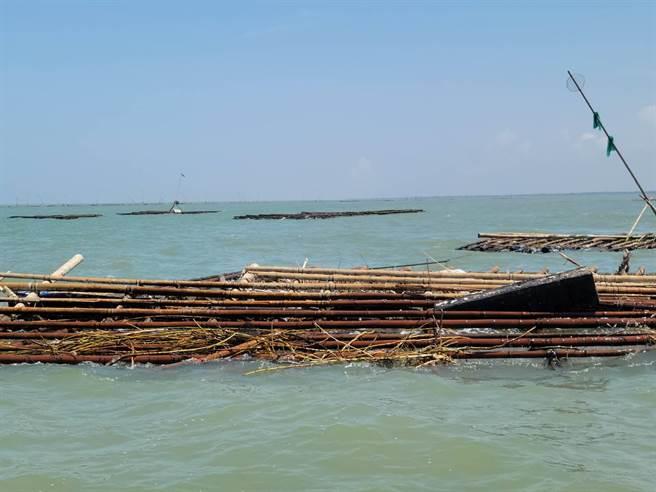 東石、布袋沿海養蚵產業遭盧碧颱風帶來的西南氣流重創,蚵農嘆損失慘重。(張建成提供/張亦惠嘉縣傳真)