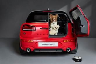 第一個狗狗友善品牌 MINI與英國慈善機構合作