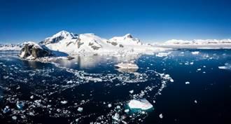 南極考察隊發現一群蓬勃發展的生物 科學家稱牠們為「奇怪的生物」
