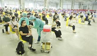 綠委僅12人公開登記高端 王鴻薇號召民眾問立委打什麼疫苗