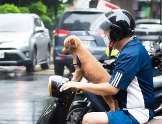 熱帶低壓路徑朝台灣而來?七夕情人節天氣出爐