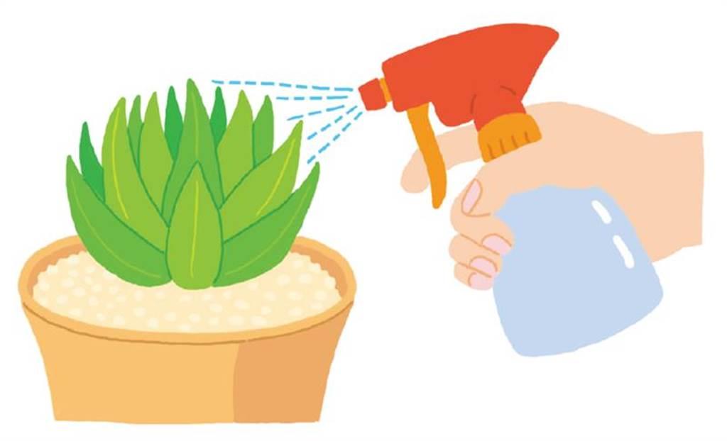蚜蟲和蟎蟲可噴殺蟲劑防治。不用怕冷害,只要靠近重點部位噴灑即可。