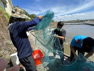 改善漁鄉產銷 高科大舉辦關懷偏鄉提案競賽