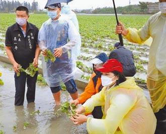 農損救助 農民疾呼按成本補貼