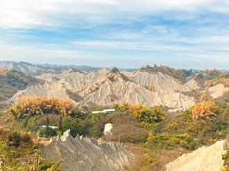龍崎4里納西拉雅風景區 地方有異見