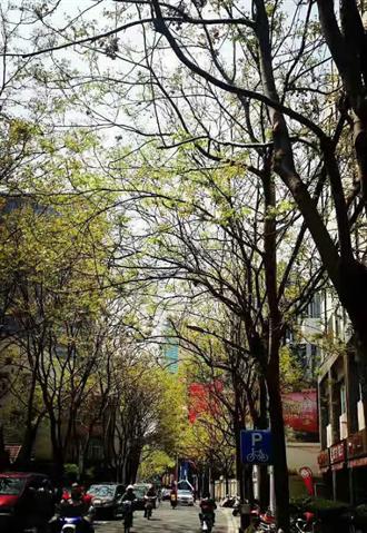 兩岸新時代》為了自由,我離開了工作十年的上海(下)