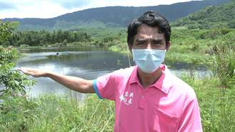 台東池上富興溼地水位恢復 原生種魚類仍稀少