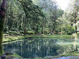 「森遊阿里山」App  教你輕鬆玩阿里山森林遊樂區