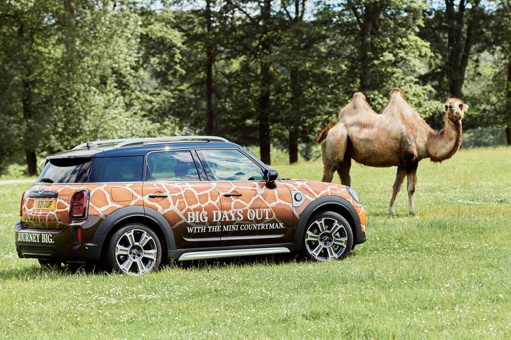 MINI宣佈與Longleat野生動物園建立新合作夥伴關係(圖/CarStuff)