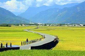 雲端旅展線上逛 感受臺東原鄉魅力