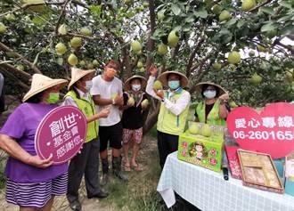 台南麻豆小農助公益 連7年捐文旦義賣助植物人