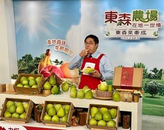 黃偉哲行銷麻豆文旦 40分鐘狂賣1.6萬顆