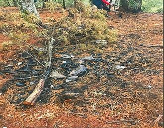 林務局求償天價2.2億