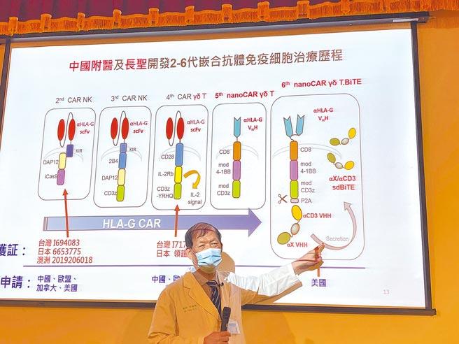 進擊版免疫細胞療法 中國附醫研究登國際期刊