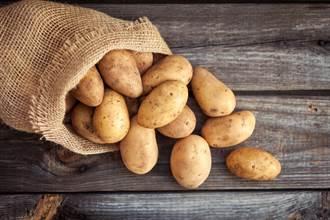 田野一顆巨大馬鈴薯竟是民宿 靈活目的地成疫後旅遊新趨勢