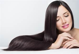 小飛象化身洗髮精 3品牌洗髮新品滿足各式需求